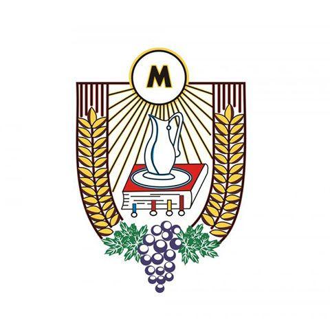 Liturgiczna służba ołtarza (Ministranci)